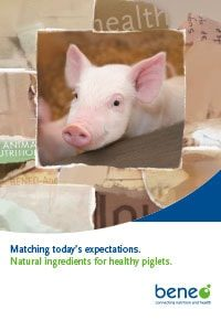 beneo animal nutrition pdf piglet broshure