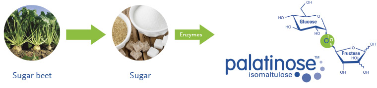 Palatinose™ (Isomaltulose) is derived from natural sugar beet.