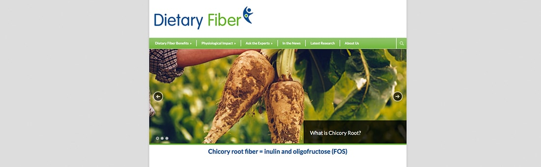 2016-12-New-website-Expert-views-on-chicory-root-fibres