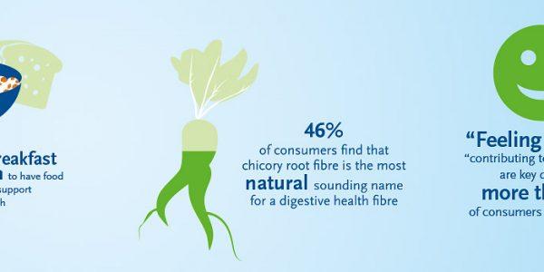 BENEO infographic digestive health EN