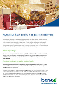 BENEO paper remypro rice protein EN 201609v2 preview