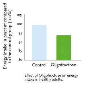 Effect of Oligofructose on energy intake in healthy adults