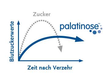 beneo-imgbox-palatinose-360x270-de