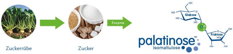 palatinose-synthesis-de