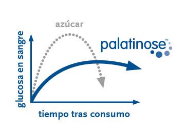 beneo-imgbox-palatinose-360x270-es