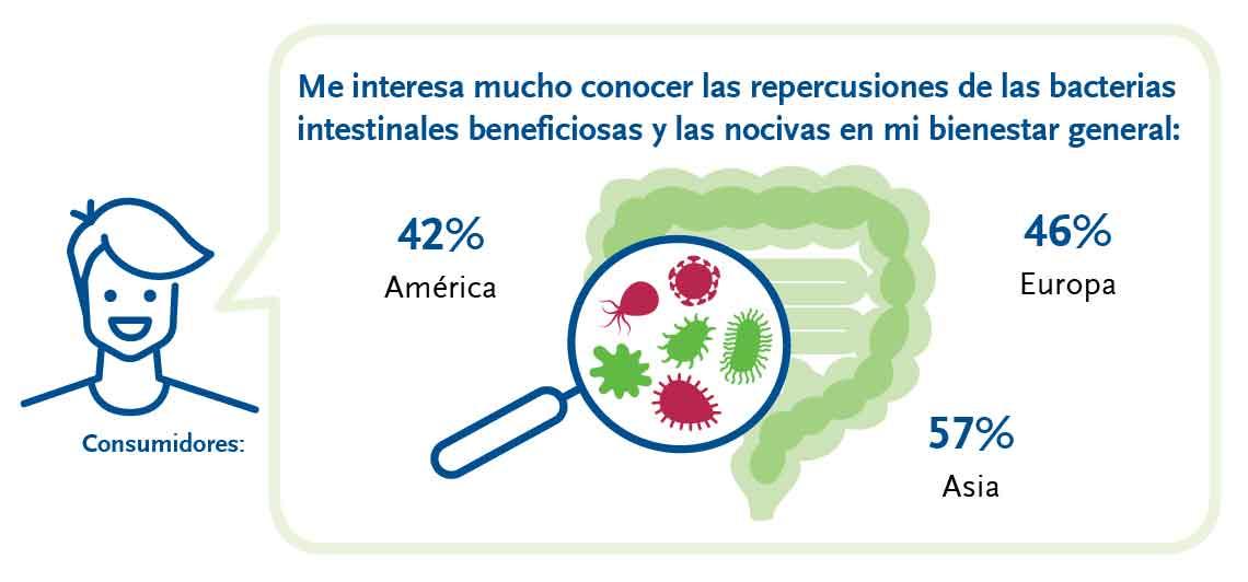 Bacterias buenas y malas en el intestino.