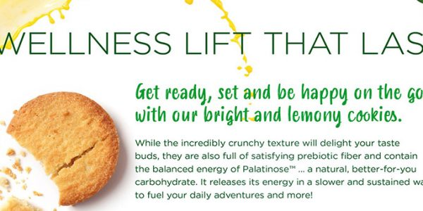 Concept - The wellness lift that lasts