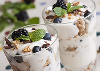 Applications for fermented dairy products