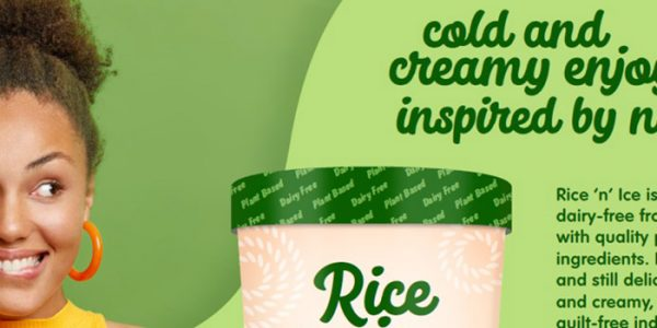 Dairy free sugar reduced ice cream with rice ingredients
