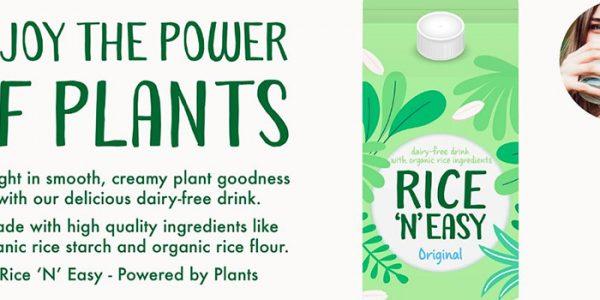 Organic rice drink