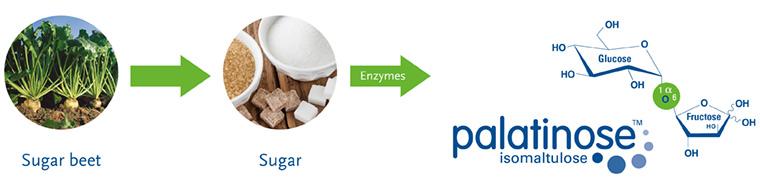 palatinose synthesis