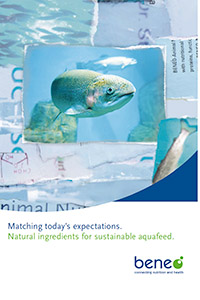 Folleto Ingredientes naturales para comida para peces sostenible.