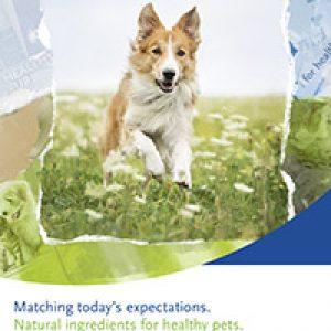 Folletto Ingredientes naturales para mascotas sanas.