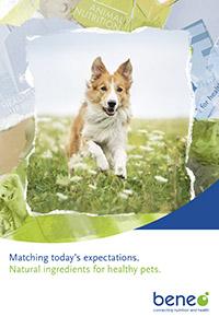 Broschüre Natürliche Ingredients für gesunde Haustiere.