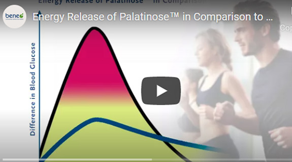 Energy release of Palationse in comparison to sucrose