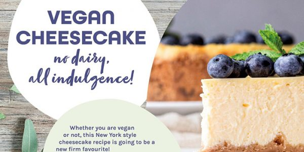 Vegan Cheese cake plant based indulgence concept