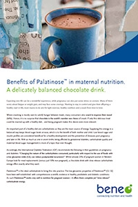BENEO Paper on Palatinose™ low-glycaemic carbohydrates in hot chocolate